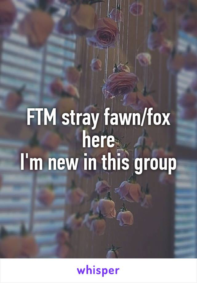 FTM stray fawn/fox here I'm new in this group