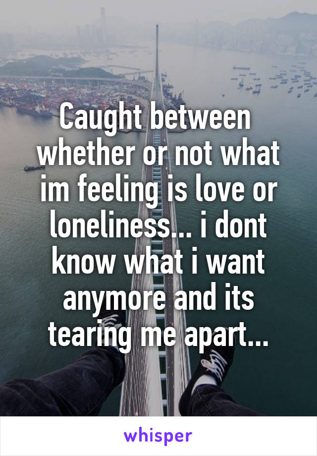 Caught between  whether or not what im feeling is love or loneliness... i dont know what i want anymore and its tearing me apart...