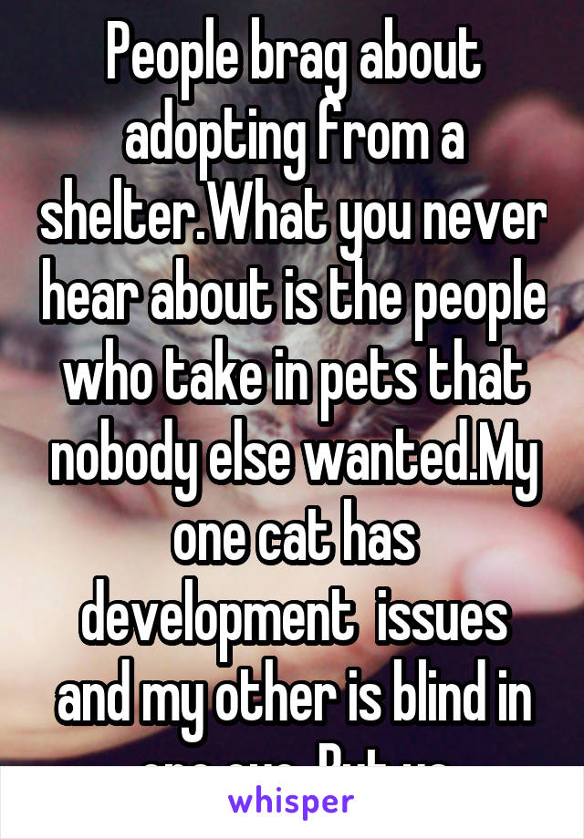 People brag about adopting from a shelter.What you never hear about is the people who take in pets that nobody else wanted.My one cat has development  issues and my other is blind in one eye. But ya