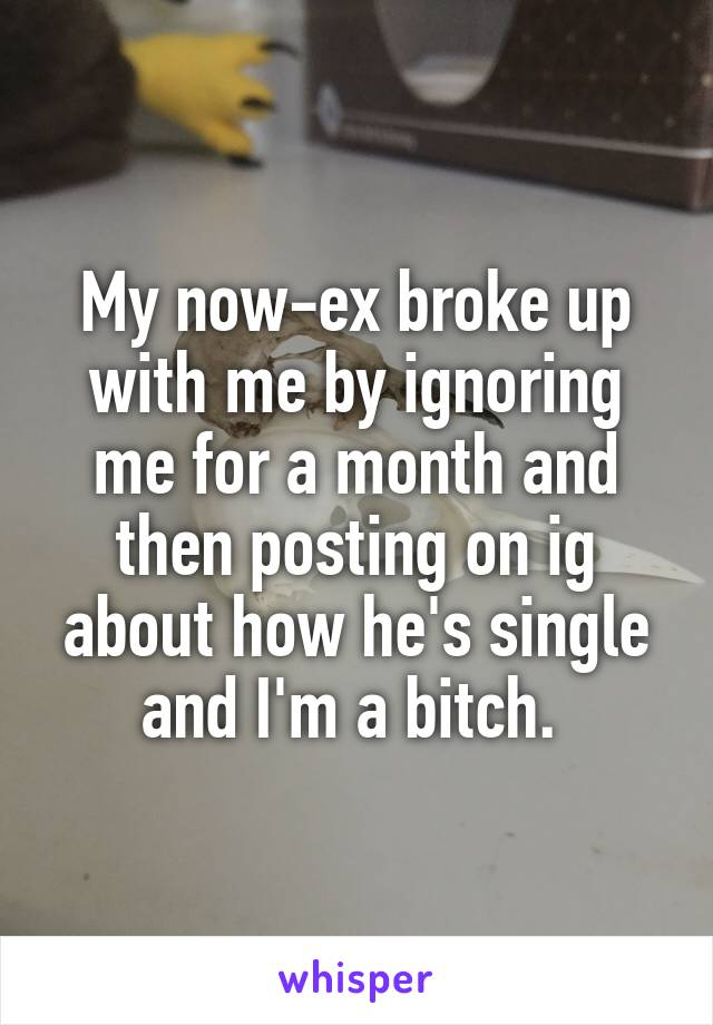 My now-ex broke up with me by ignoring me for a month and then posting on ig about how he's single and I'm a bitch.