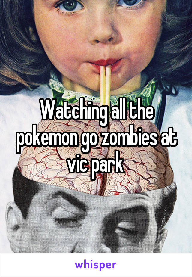 Watching all the pokemon go zombies at vic park