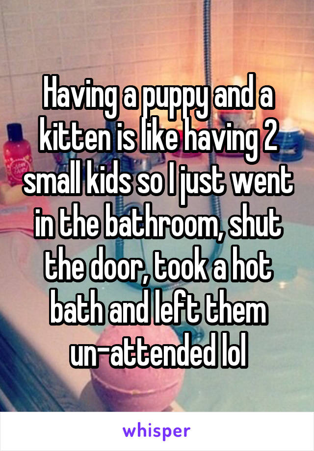 Having a puppy and a kitten is like having 2 small kids so I just went in the bathroom, shut the door, took a hot bath and left them un-attended lol