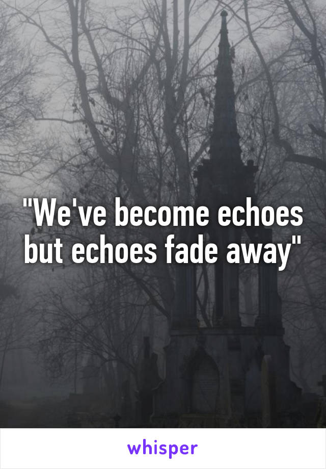 """We've become echoes but echoes fade away"""