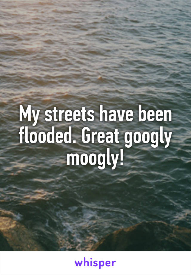 My streets have been flooded. Great googly moogly!