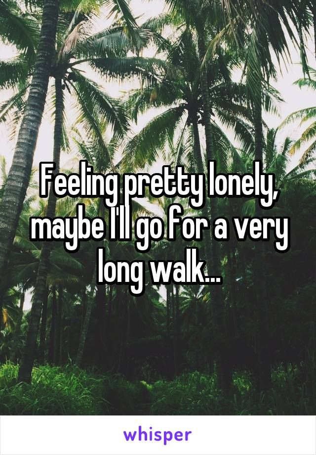 Feeling pretty lonely, maybe I'll go for a very long walk...