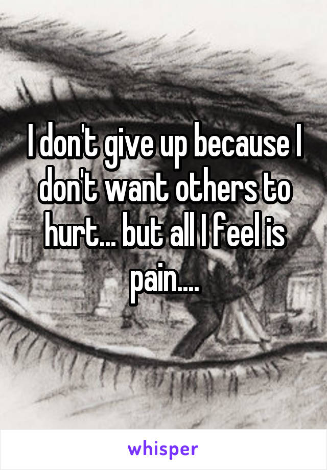 I don't give up because I don't want others to hurt... but all I feel is pain....