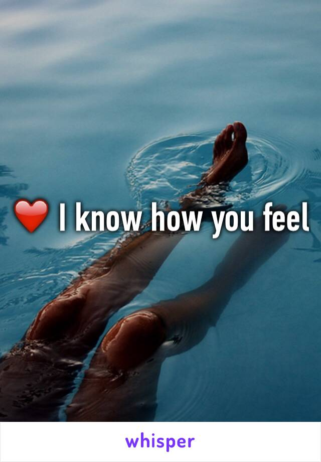 ❤️ I know how you feel