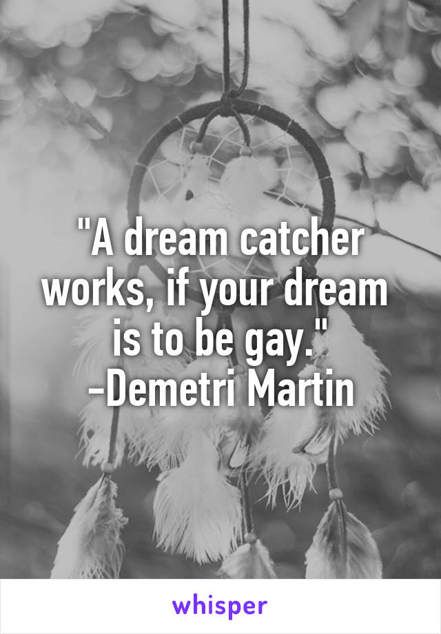 A Dream Catcher Works If Your Dream Is To Be Gay Demetri Martin Magnificent Martin Dream Catcher
