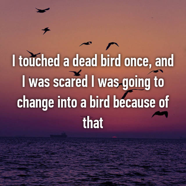 I touched a dead bird once, and I was scared I was going to change into a bird because of that 😂