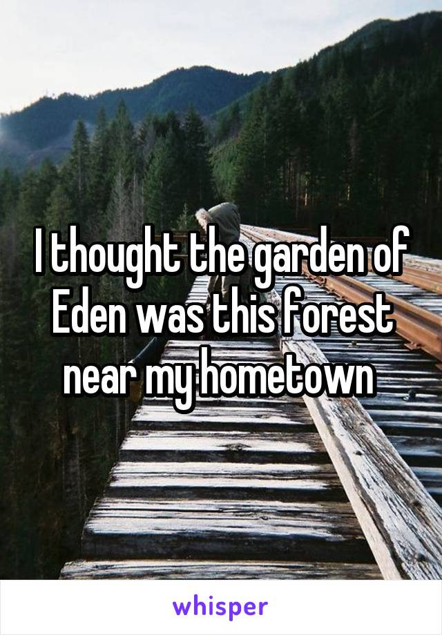 I thought the garden of Eden was this forest near my hometown