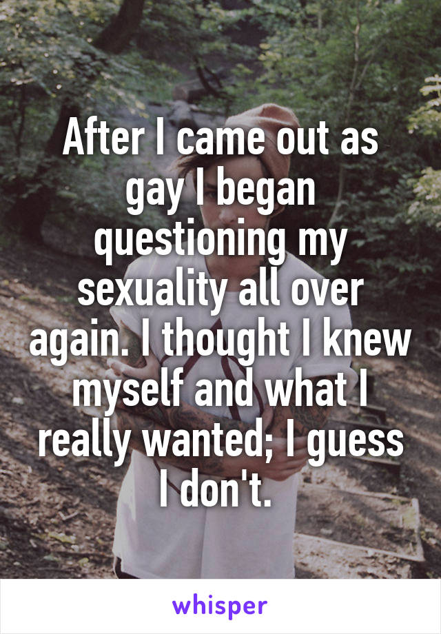 After I came out as gay I began questioning my sexuality all over again. I thought I knew myself and what I really wanted; I guess I don't.