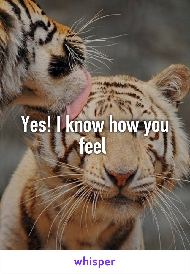Yes! I know how you feel