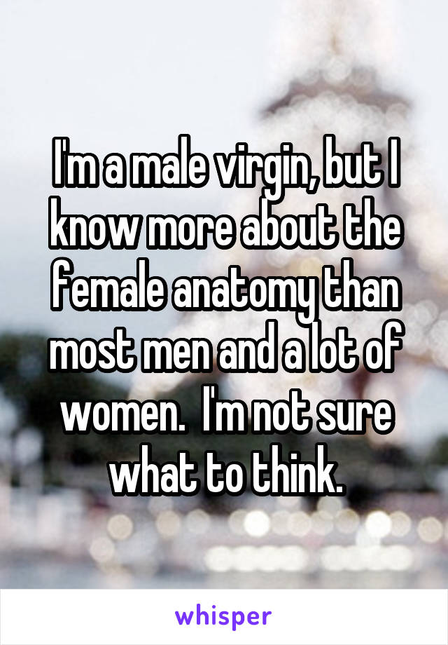 I'm a male virgin, but I know more about the female anatomy than most men and a lot of women.  I'm not sure what to think.