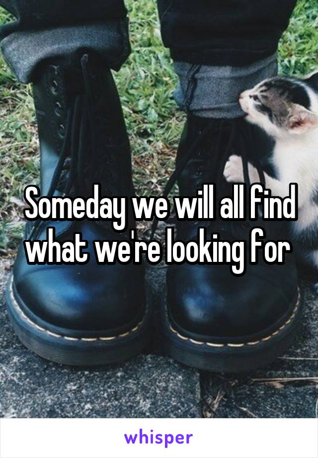 Someday we will all find what we're looking for