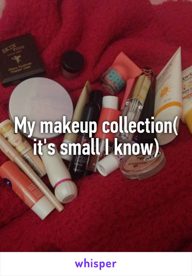 My makeup collection( it's small I know)