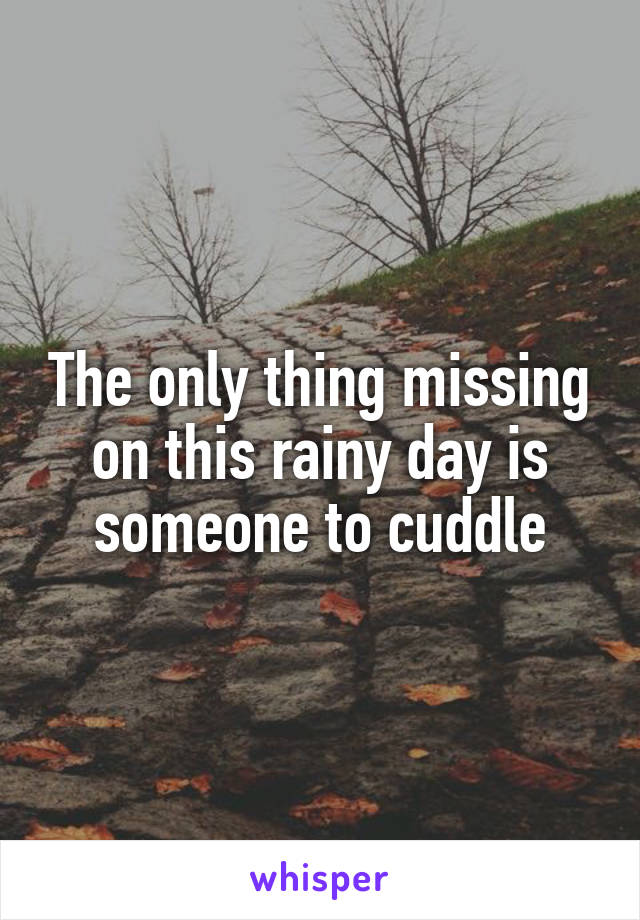 The only thing missing on this rainy day is someone to cuddle