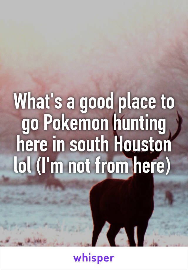 What's a good place to go Pokemon hunting here in south Houston lol (I'm not from here)