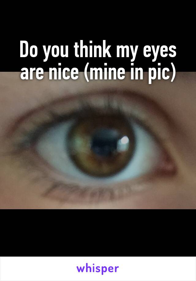 Do you think my eyes are nice (mine in pic)