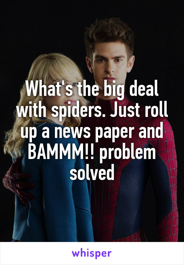 What's the big deal with spiders. Just roll up a news paper and BAMMM!! problem solved