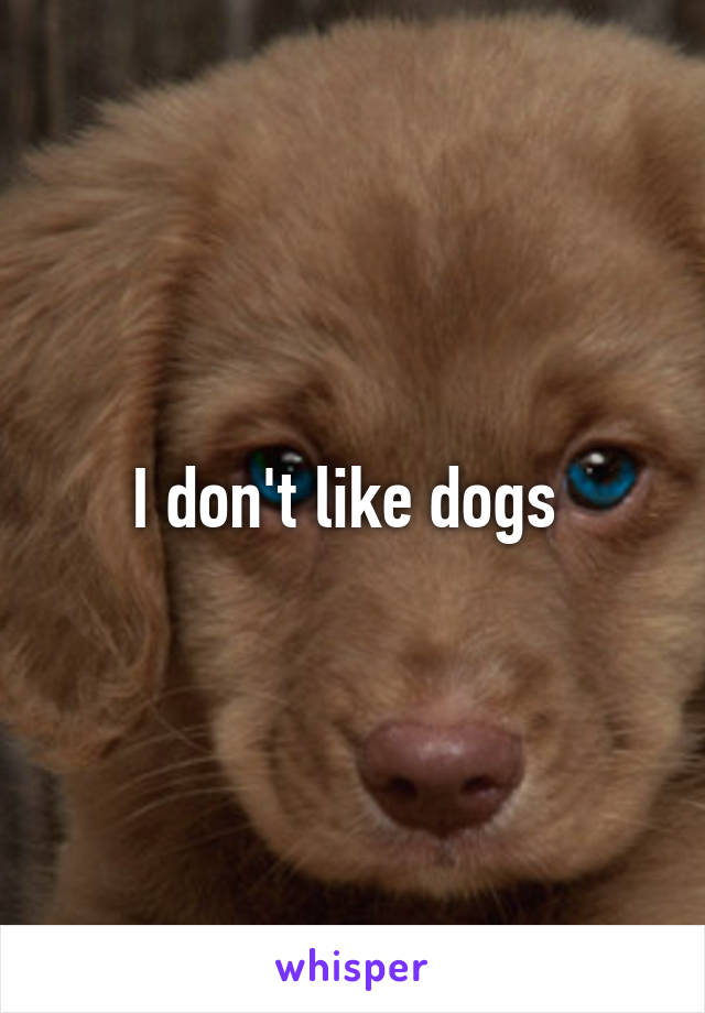 I don't like dogs