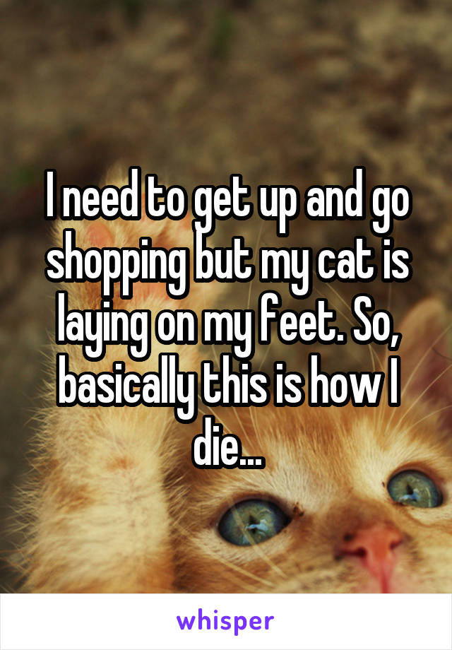 I need to get up and go shopping but my cat is laying on my feet. So, basically this is how I die...
