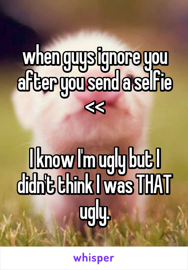 when guys ignore you after you send a selfie <<  I know I'm ugly but I didn't think I was THAT ugly.