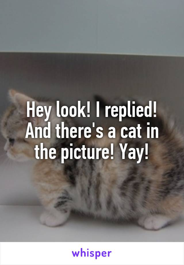 Hey look! I replied! And there's a cat in the picture! Yay!