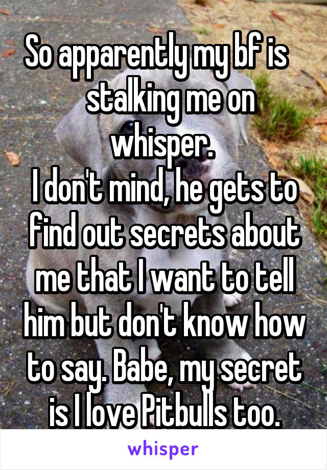 So apparently my bf is       stalking me on  whisper.  I don't mind, he gets to find out secrets about me that I want to tell him but don't know how to say. Babe, my secret is I love Pitbulls too.