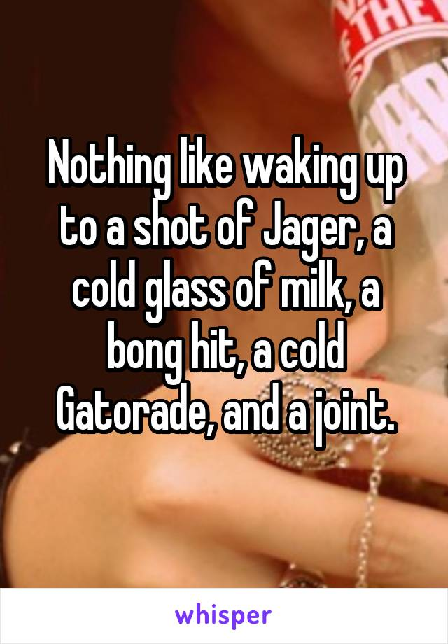 Nothing like waking up to a shot of Jager, a cold glass of milk, a bong hit, a cold Gatorade, and a joint.