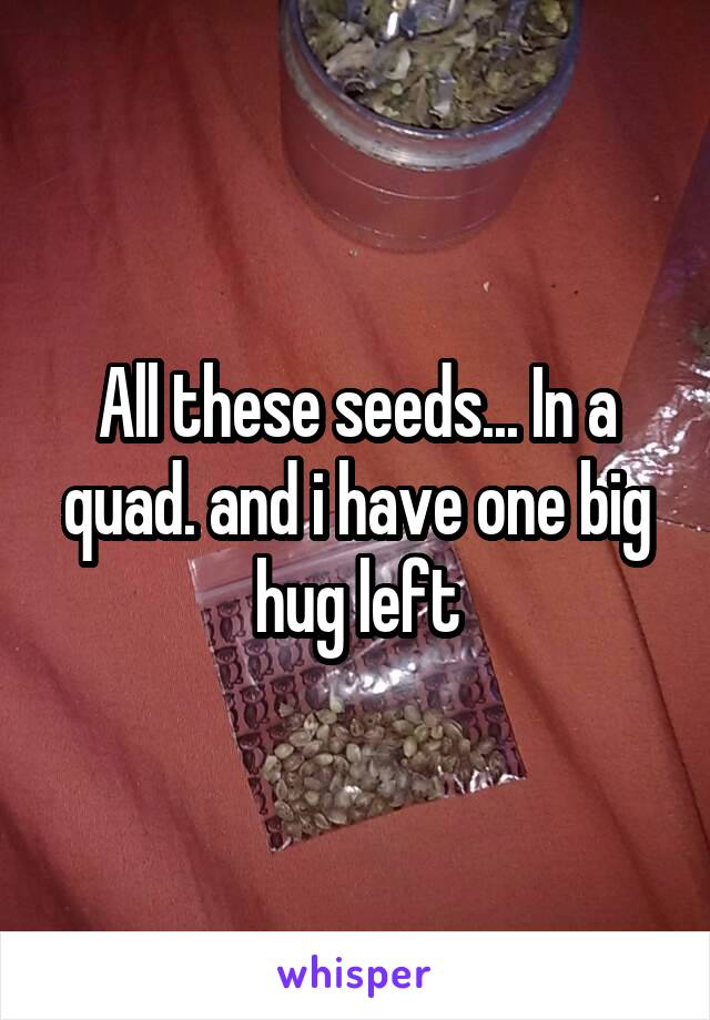 All these seeds... In a quad. and i have one big hug left