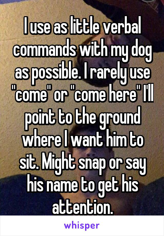 """I use as little verbal commands with my dog as possible. I rarely use """"come"""" or """"come here"""" I'll point to the ground where I want him to sit. Might snap or say his name to get his attention."""