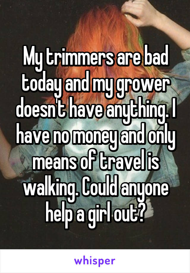 My trimmers are bad today and my grower doesn't have anything. I have no money and only means of travel is walking. Could anyone help a girl out?