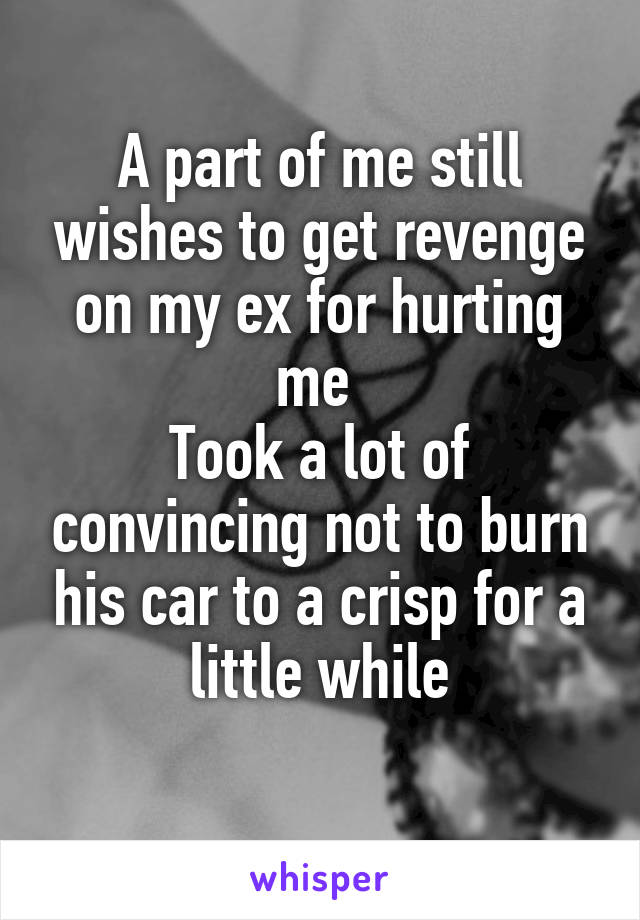 A part of me still wishes to get revenge on my ex for hurting me  Took a lot of convincing not to burn his car to a crisp for a little while