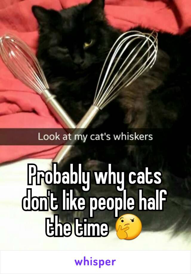 Probably why cats don't like people half the time 🤔