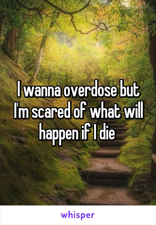I wanna overdose but I'm scared of what will happen if I die