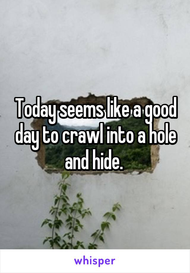 Today seems like a good day to crawl into a hole and hide.