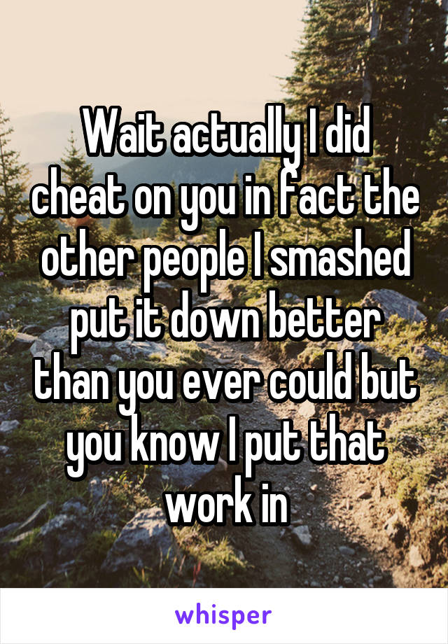 Wait actually I did cheat on you in fact the other people I smashed put it down better than you ever could but you know I put that work in