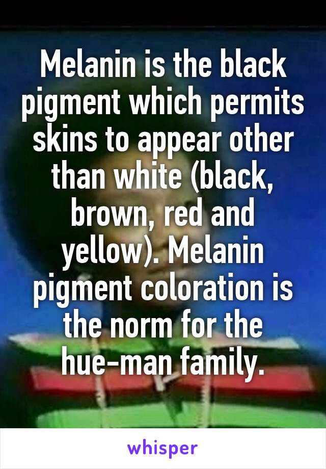 Melanin is the black pigment which permits skins to appear other than white (black, brown, red and yellow). Melanin pigment coloration is the norm for the hue-man family.