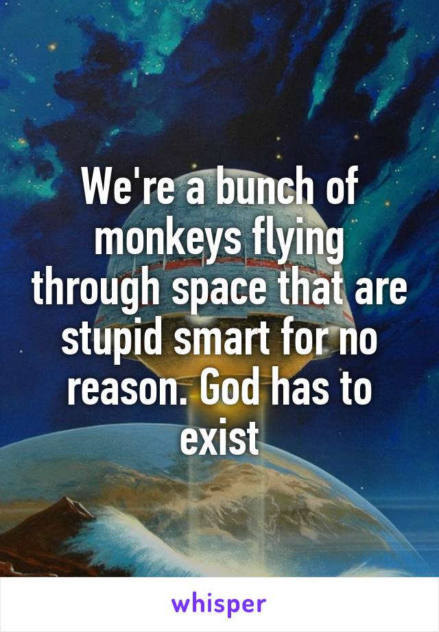 We're a bunch of monkeys flying through space that are stupid smart for no reason. God has to exist