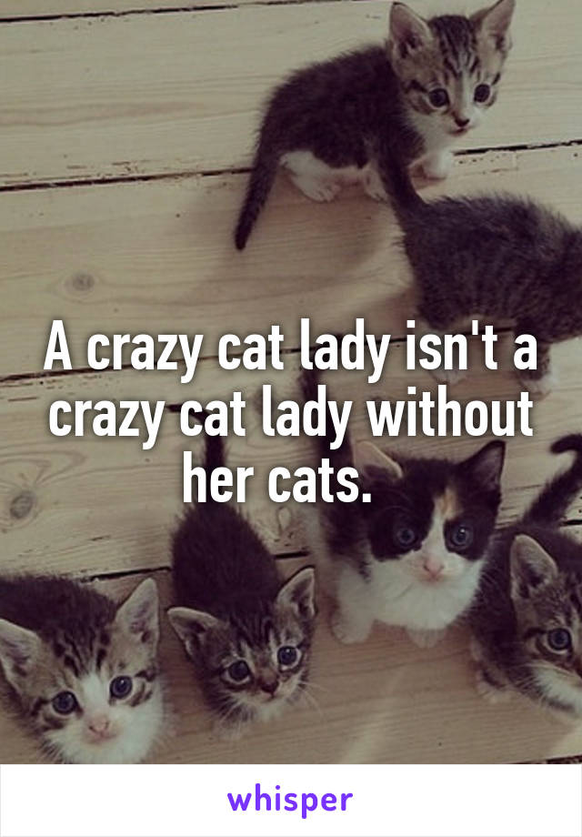 A crazy cat lady isn't a crazy cat lady without her cats.