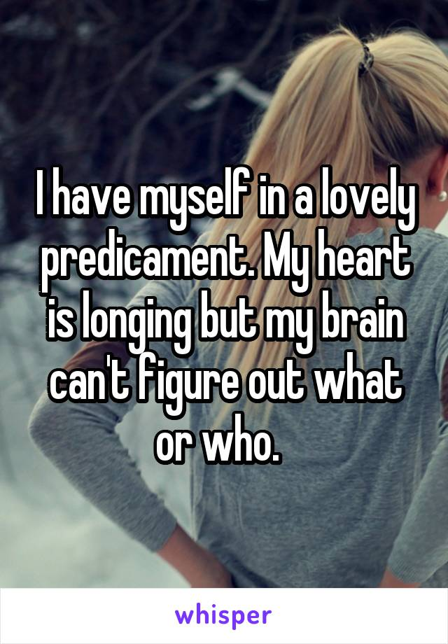 I have myself in a lovely predicament. My heart is longing but my brain can't figure out what or who.