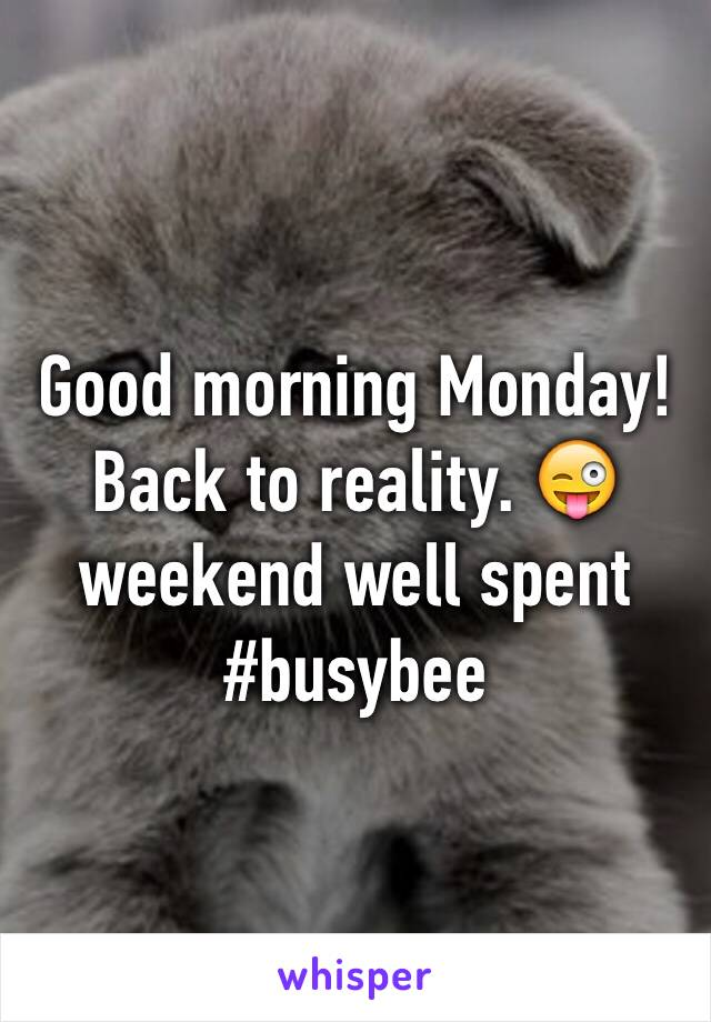 Good morning Monday! Back to reality. 😜 weekend well spent #busybee
