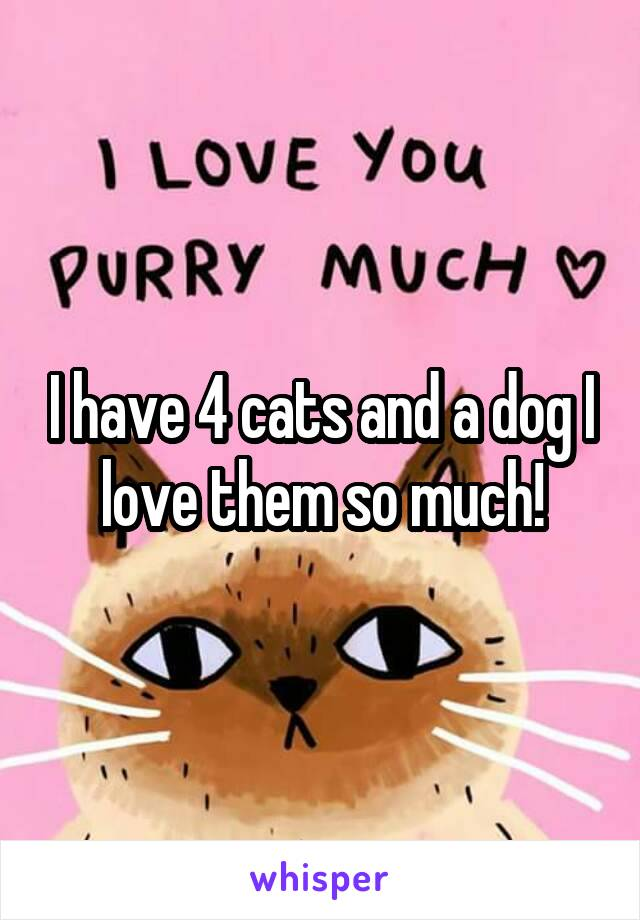 I have 4 cats and a dog I love them so much!