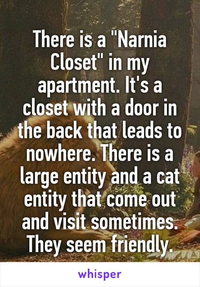 """There is a """"Narnia Closet"""" in my apartment. It's a closet with a door in the back that leads to nowhere. There is a large entity and a cat entity that come out and visit sometimes. They seem friendly."""