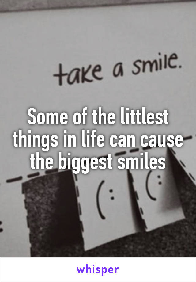 Some of the littlest things in life can cause the biggest smiles