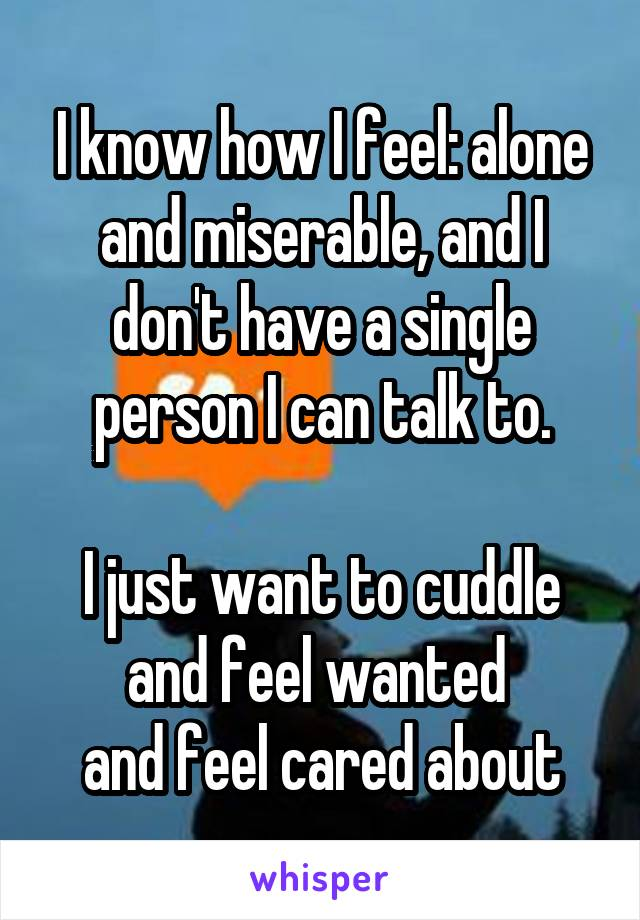 I know how I feel: alone and miserable, and I don't have a single person I can talk to.  I just want to cuddle and feel wanted  and feel cared about