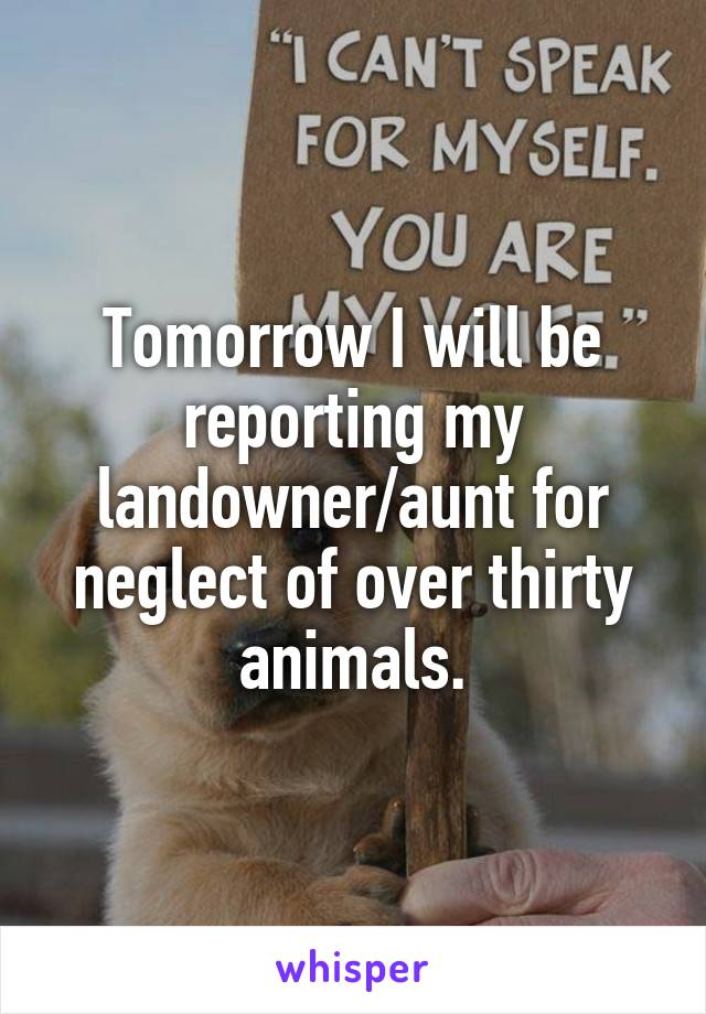 Tomorrow I will be reporting my landowner/aunt for neglect of over thirty animals.