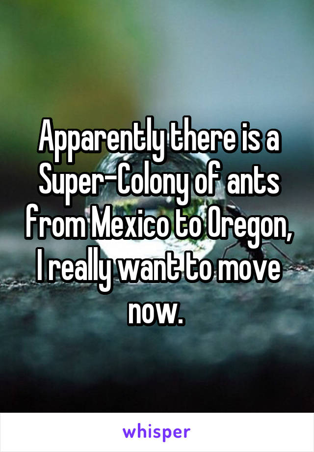 Apparently there is a Super-Colony of ants from Mexico to Oregon, I really want to move now.