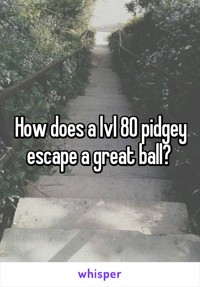 How does a lvl 80 pidgey escape a great ball?