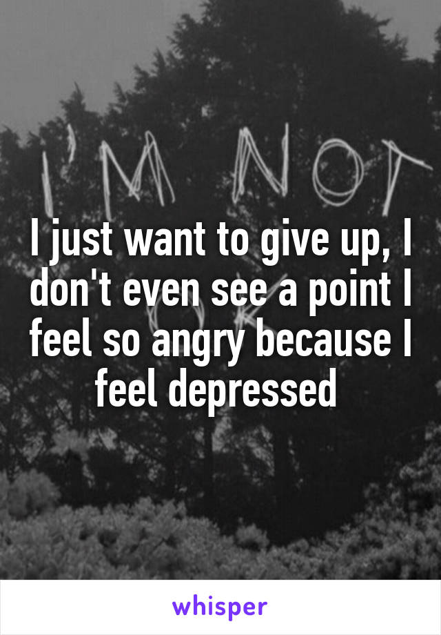 I just want to give up, I don't even see a point I feel so angry because I feel depressed